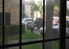 Window Dickflash Neighbor