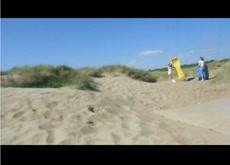 dickflash beach