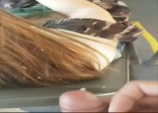 risky cum in hair