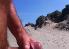 dick in the beach