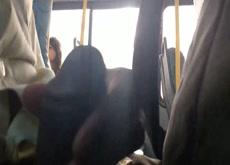 Bus Flash for Teen Cutie