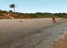 Dog steals milf's bikini bottoms