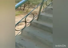 Caught having sex on terrace